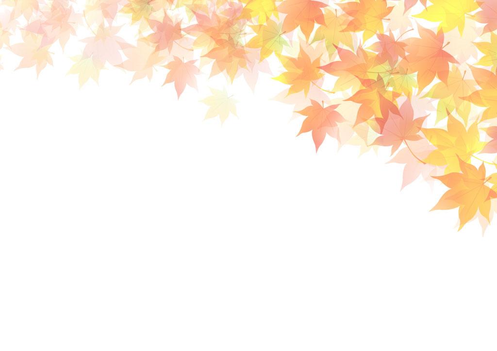 ふじみ野市鶴ヶ岡のピアノ教室メープル-壁紙